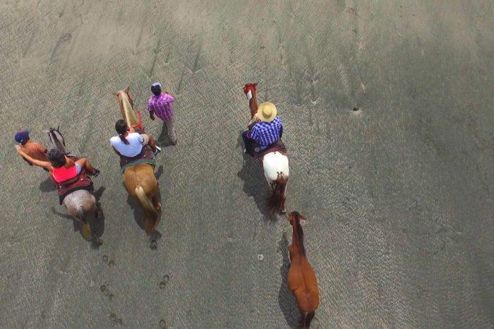 Plano aereo paseo a caballo por la playa