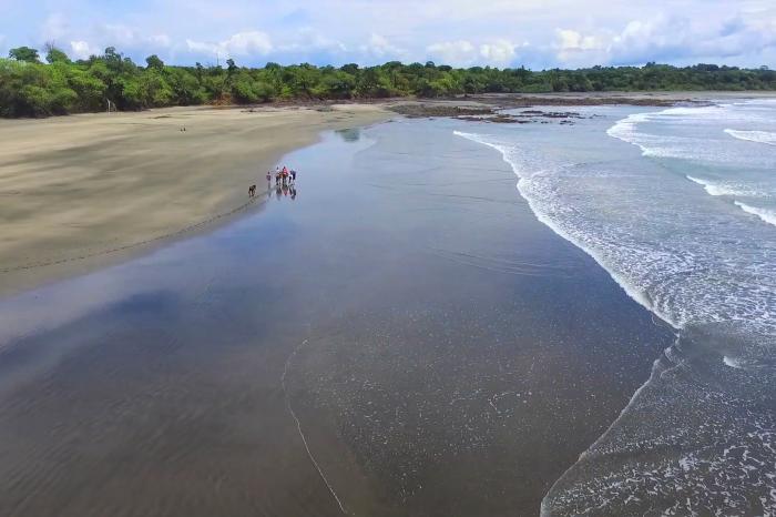 Paseos a caballo por playa Estero