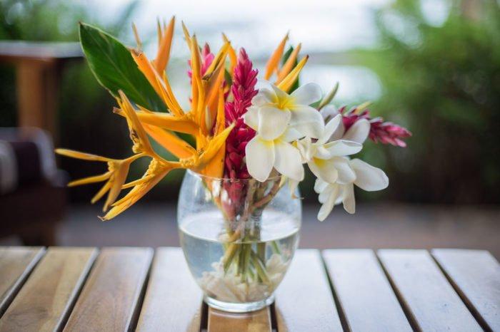 Prime plano flores y fondo de la piscina del hotel Santa Catalina