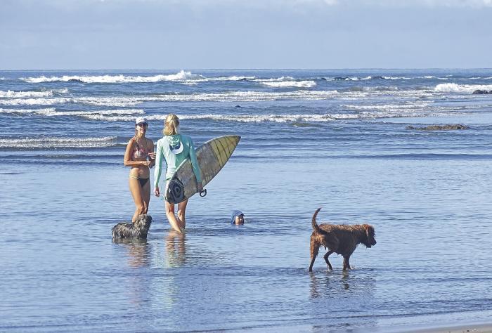 la Estrella Panama Articulo 030220 playa Estero